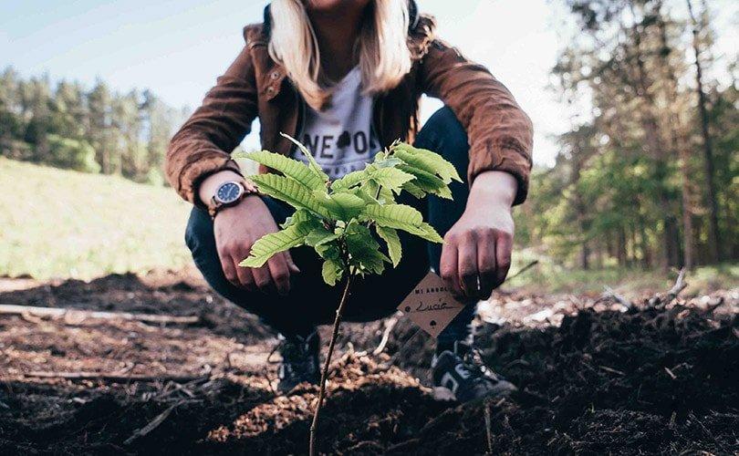 One Oak, una historia de emprendimiento sostenible