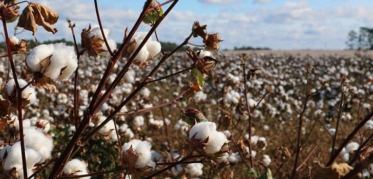 Uzbekistán insiste en el arancel cero para las exportaciones textiles a la Unión Europea